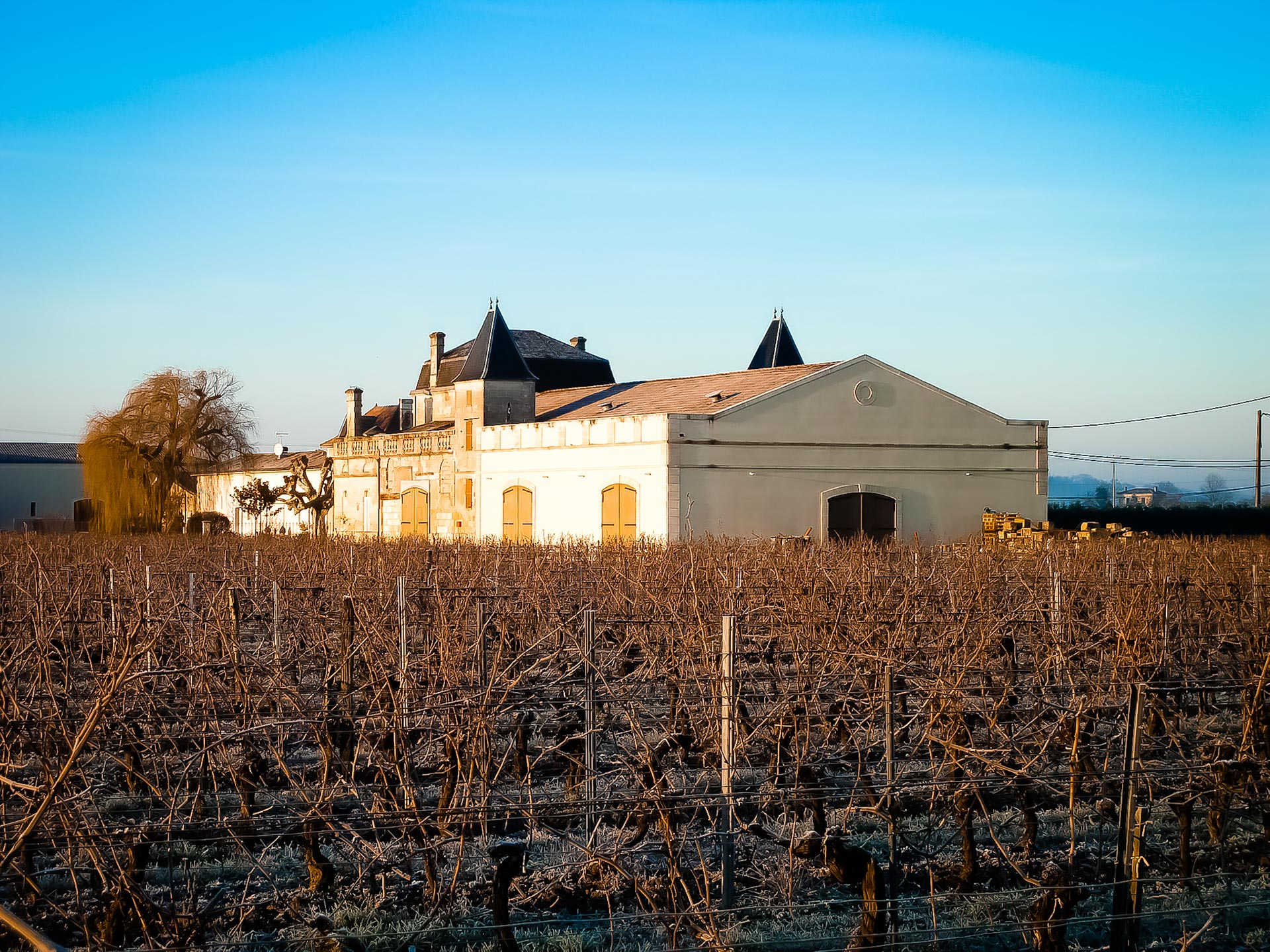 Chateau Franc Lartigue-7_web